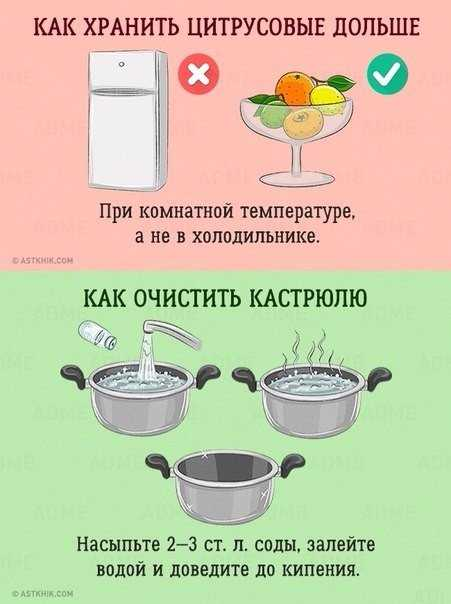 Как хранить цитрусовые