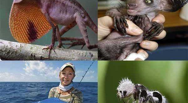 10 животных о которых вы не знали