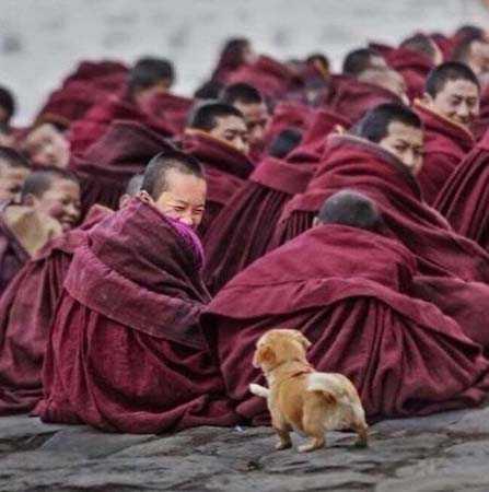 Где-то в монастыре Шаолинь